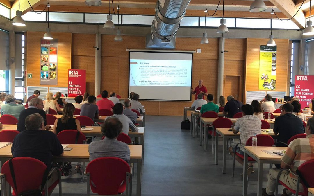 GLOBALLEIDA presenta el Clúster Oleícola de Catalunya a la jornada tècnica organitzada per l'IRTA a Reus