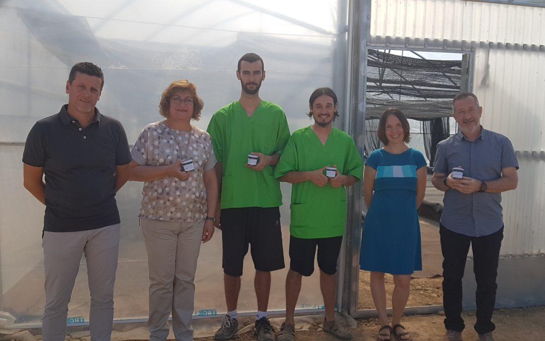 Primera collita d'Espirulina de la granja d'Almenar